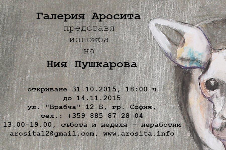 Ния Пушкарова – живопис и видео в галерия АРОСИТА